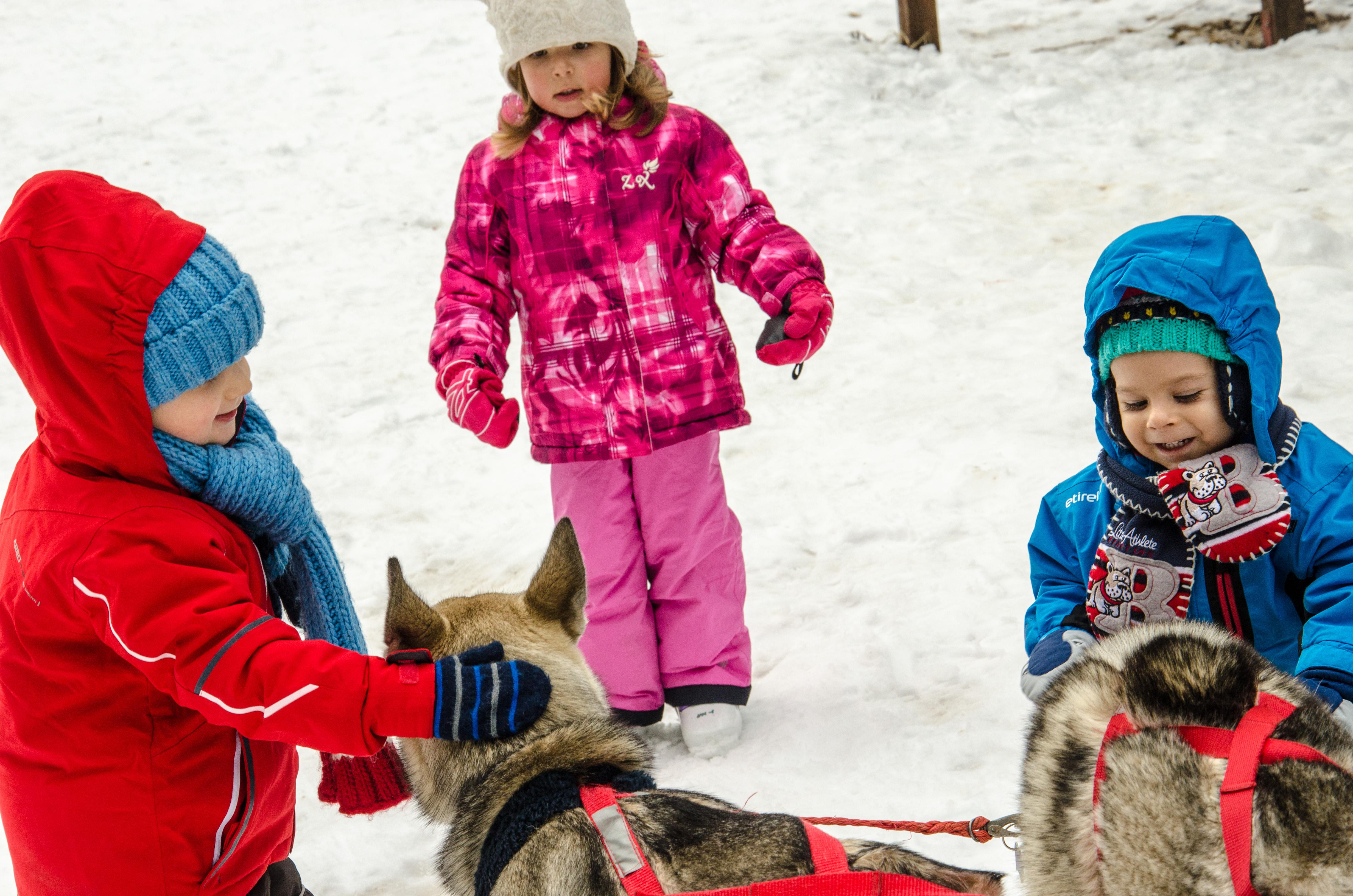 Животните бяха много доброжелателни към децата.